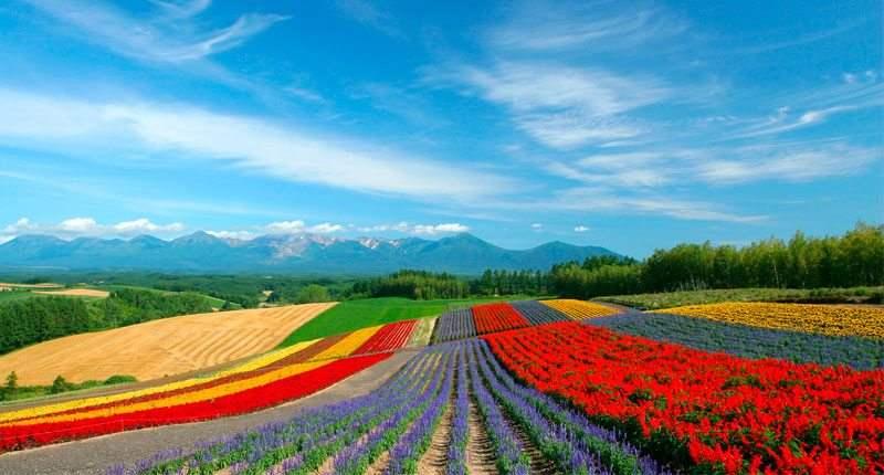 paisajes-mas-coloridos-del-mundo-1