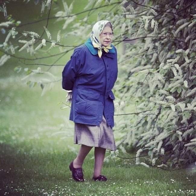 Казалось бы, просто бабуля идет в магазин, а на самом деле - это королева Англии...вот так сюрприз!