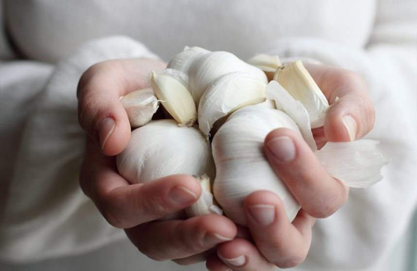 Woman holding garlic. Concept - Simple Life.