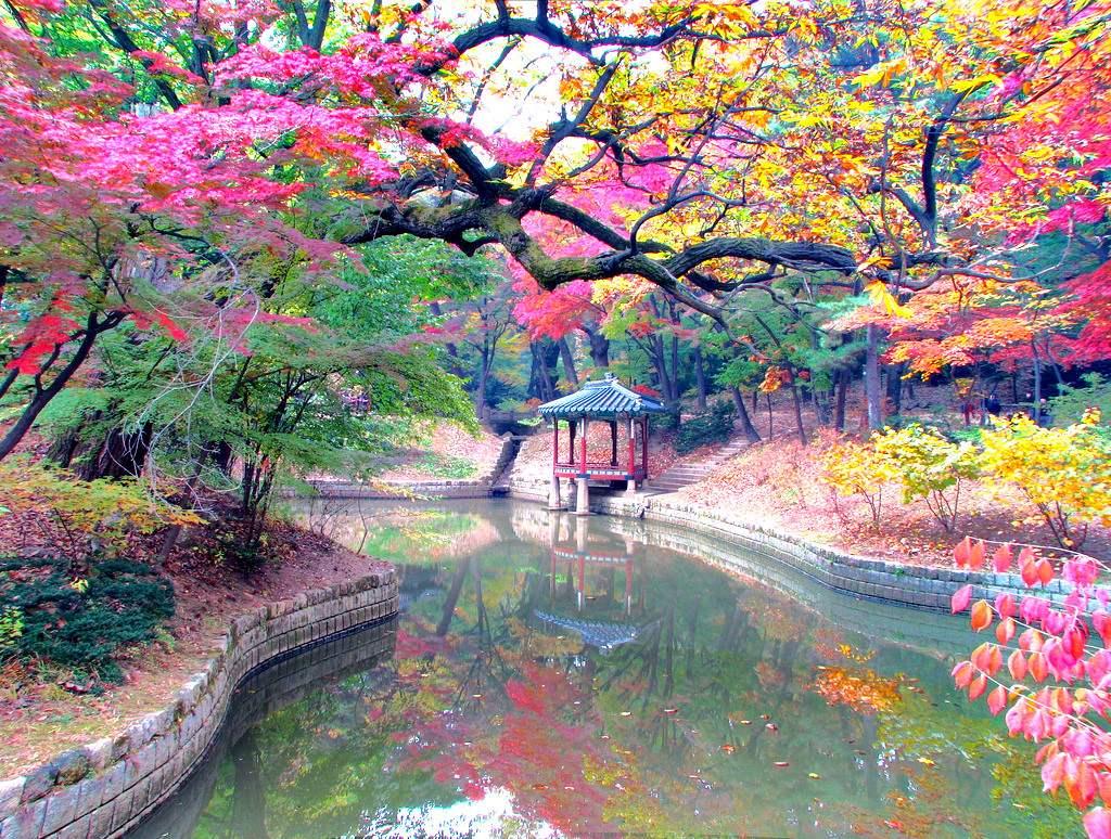 Очаровательная осень в разных уголках планеты