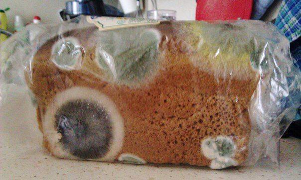 Почему опасно хранить хлеб в пакете?