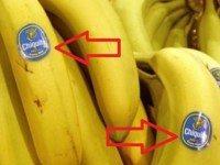 ВАЖНО! Всегда ищите наклейки на бананах! Если номер начинается с 8 — Не трогайте этот фрукт!