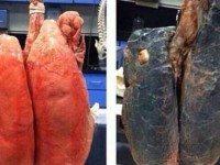 Как бросить курить за 6 секунд: После этого видео вы никогда больше не притронетесь к сигаретам