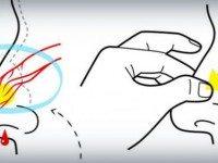 6 приемов, которые помогут быстро остановить кровотечение из носа.