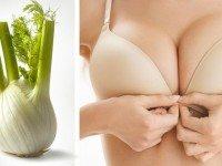 Вот от чего действительно растет грудь! Знать бы раньше…