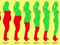 Как растопить лишний жир за 8 недель: стабильный результат без эффекта возврата веса.