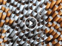 Из чего делают сигареты: слабонервным не смотреть!