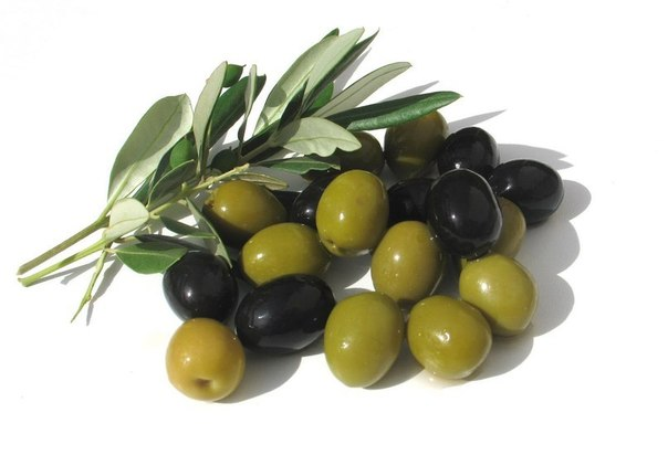 Польза и вред оливок