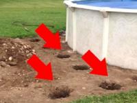 Сделав пару отверстий в земле, мужчина превратил обычный разборный бассейн в нечто!