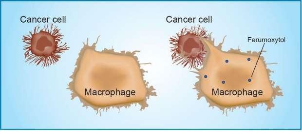 Обычное лекарство, продающееся без рецепта, лечит рак! Такой вот побочный эффект...