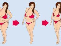 Изменения метаболизма: как меняется обмен веществ в 20, 30, 40 и 50 лет