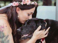 Умирающий пес не отходил от невесты. Возле алтаря она опустилась на колени, и гости не могли сдержать слез