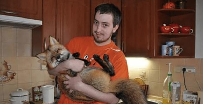Парень купил лису на меховой ферме, чтобы спасти от гибели