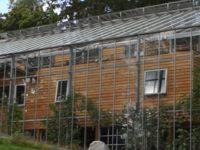Шведская семья накрыла теплицей свой дом, чтобы круглый год есть фрукты и не мерзнуть!
