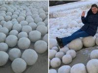 На побережье российского Заполярья появились сотни загадочных гигантских снежков