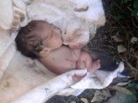.... Мужчина нашел в парке брошенную новорожденную девочку. То, что он потом сделал .... просто НЕВЕРОЯТНО!!!