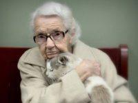 Когда внуки оставили кота бабушке, то даже не подозревали, что он так ей пригодится