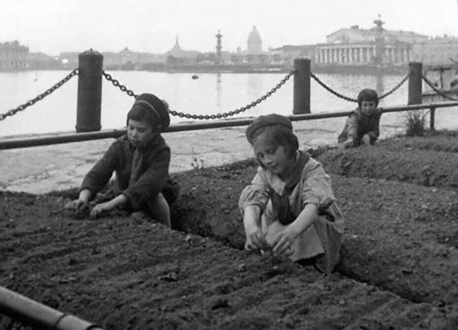 «Счастливое» письмо из блокадного Ленинграда