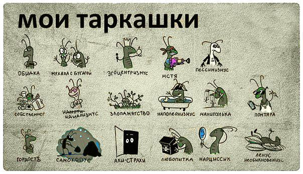 Характер женских тараканов
