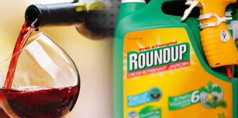 Гербицид, которым травят вредителей, нашли в некоторых марках пива и вина