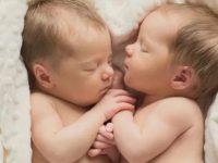 Как близнецы родили... близнецов, переполошился весь роддом