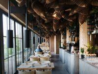 азиатская кухня в киеве